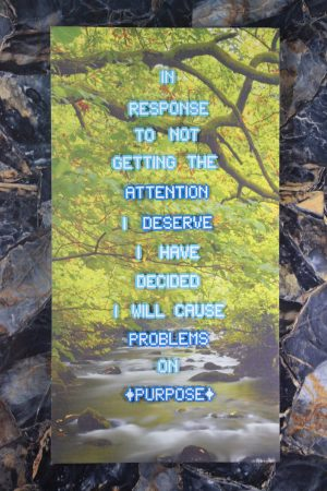 Cause Problems on Purpose